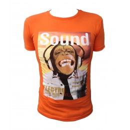 T-shirt AEROPILOTE SINGE orange